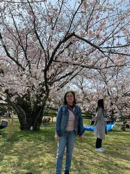 桜1903_1.jpg